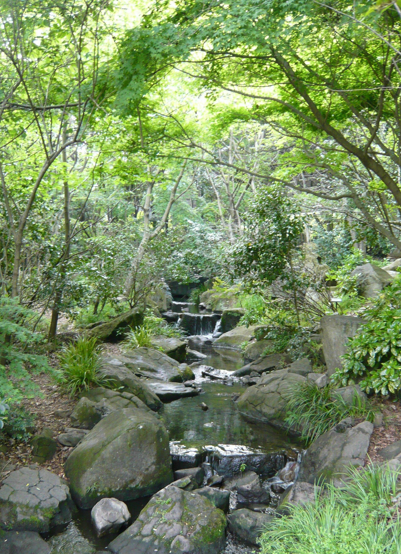 泉の森~小さな滝~