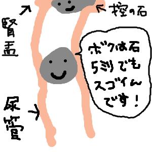 Cocolog_oekaki_2009_09_06_00_13